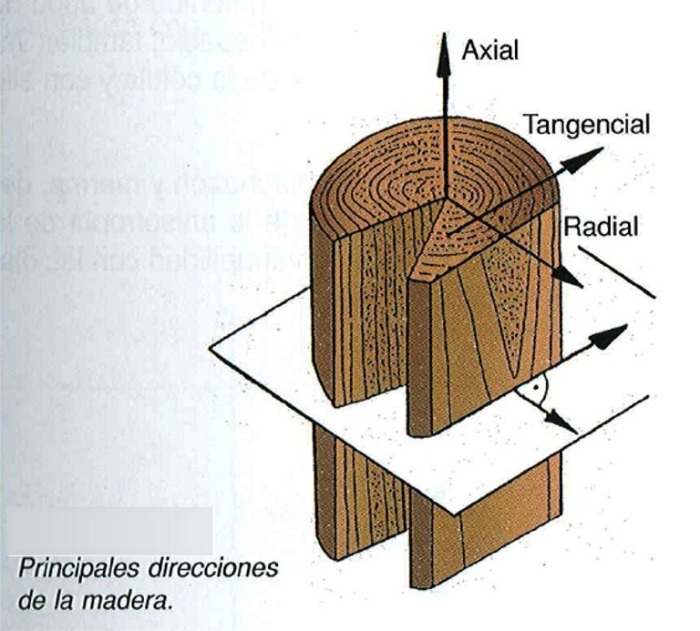 Direcci n radial qu micas th i for La beta de la madera