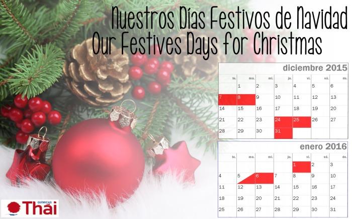 Nuestros Días Festivos de Navidad | Our Festive Days forChristmas